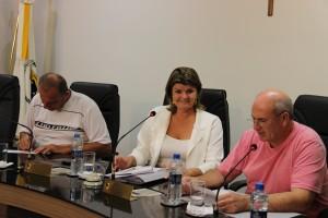 Sessão Ordinária (5)