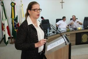 Sessão Ordinária 028